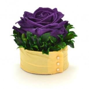 Smeraldino B Edit (Sötét lila),
