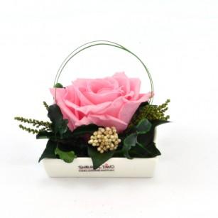 Smeraldino D Dita  (Rózsaszín),