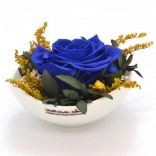 Smeraldino E Tera (Sötét kék),