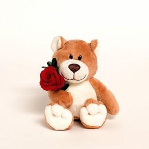 Smeraldino M Maci (a rózsák több színben),