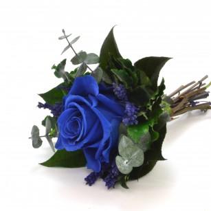 Smeraldino B Lucy (Sötét kék),