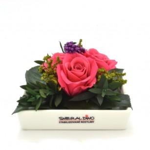 Smeraldino E Zina (Pink),