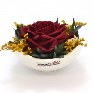 Smeraldino E Tera (Vörös),