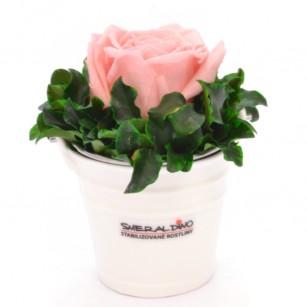 Smeraldino C Ida (rózsaszín),
