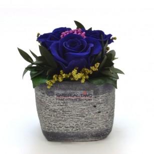 Smeraldino E Ina dark (sötét kék),