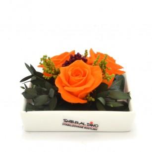 Smeraldino E Zina (Narancs),