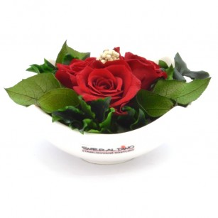Smeraldino E Nela (Piros),